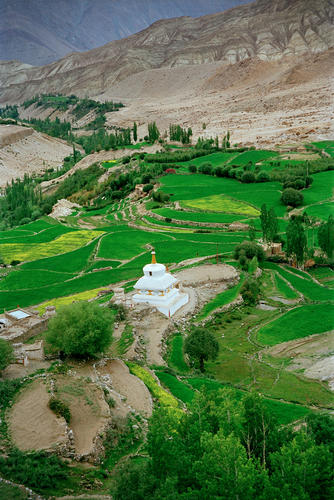 Long winding roads, chortens and fields of crops adorn the entrances to every Ladakhi settlement or temple.