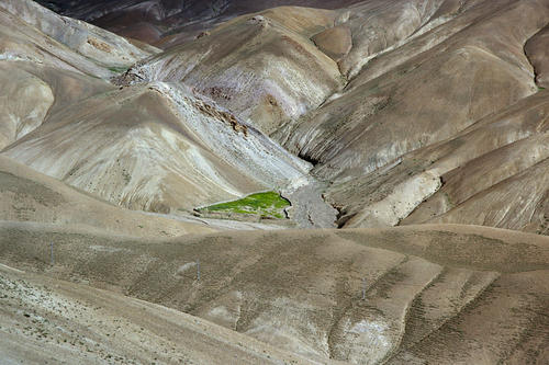 A green oasis suddenly punctuates an arid wilderness so typical of many vistas in Ladakh.