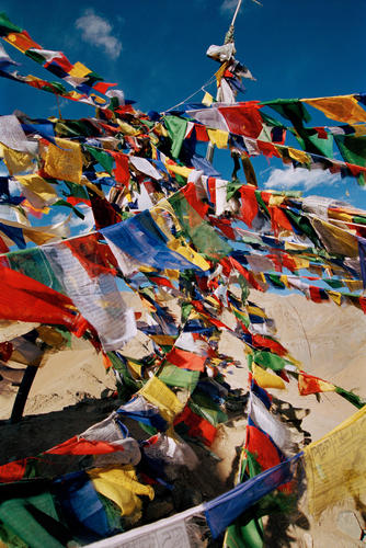 Prayer flags flutter close to the Namgyal Tsemo temple in Leh, Ladakh.