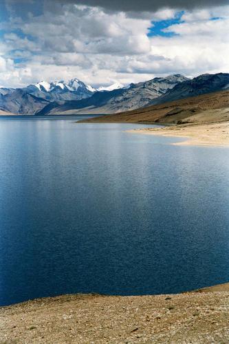 Lake Tso-Moriri, Korzok, Ladakh.