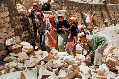 Locals building a fence, Leh, Ladakh.