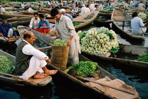Merchants at the floating vegetable market on Dal Lake, Srinagar, Kashmir.