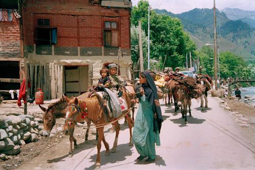 Nomadic Gujjar people at Aru, Kashmir.