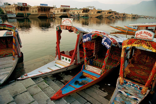Traditional Shikara boats moored on the Dal Lake, Srinagar, Kashmir.