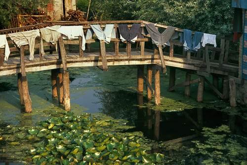 Washing on a bridge on the Dal Lake, Srinagar, Kashmir.