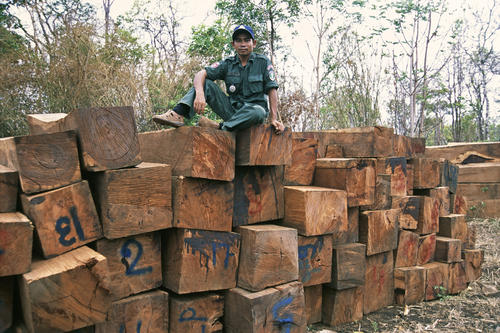 Illegal timber seized outside the Mondulkiri Protected forest, Mondulkiri Province, Cambodia.