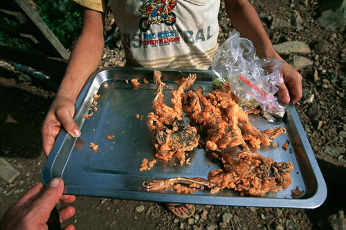 Fried frogs for sale at Skuon, Cheung Prey, Kampong Cham Province, Cambodia.