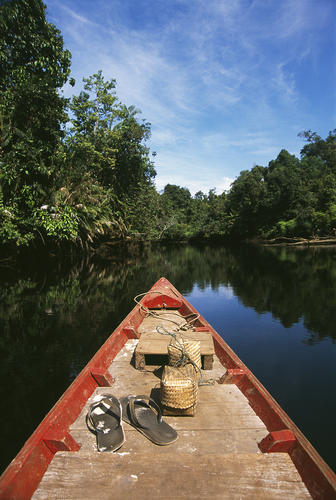 A boat ride along the banks of the Phipot River close to the village of Chi Phat, Koh Kong Province, Cambodia.
