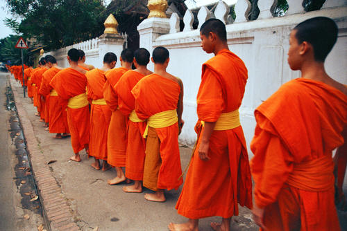 Monks lining up to collect their early morning alms, Luang Prabang.