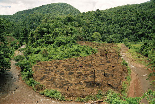 Deforestation at the Luang Nam Ha national protected area, Muang Sing, Luang Namtha Province.