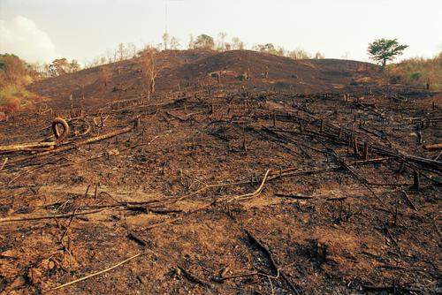 Deforestation caused by slash and burn farming outside Luang Prabang.