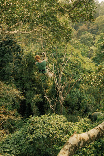 Tourist zip lining through the jungle in the Bokeo Nature Reserve, Bokeo Province.