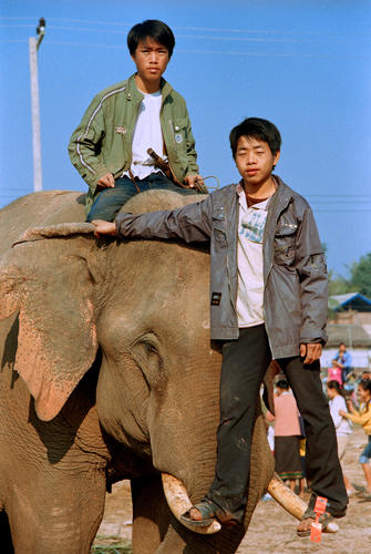 Two young mahouts at the annual Elephant Festival, Sayaboury Province, Laos.
