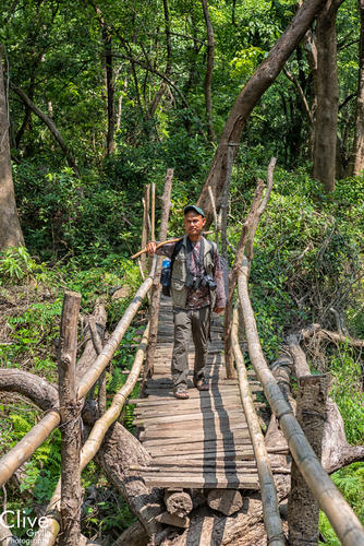 Guide walking across a bamboo bridge in the Chitwan National Park