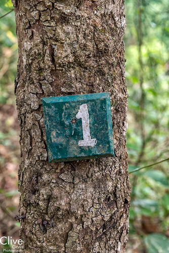 Sign on a tree marking the entrance to a room at the derelict 'Tiger Tops' Camp in the Chitwan National Park