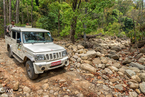 Jeep driving through the Bardia National Park