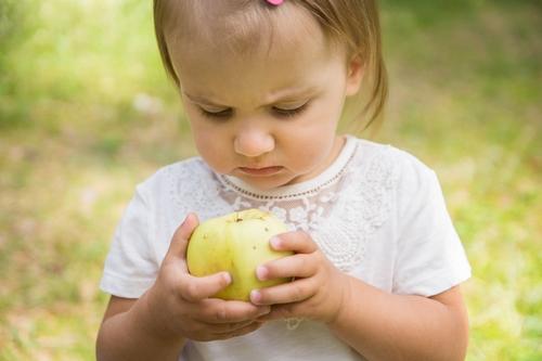 Bērns baltā kreklā tur rokās ābolu bērna fotosesija rudenī