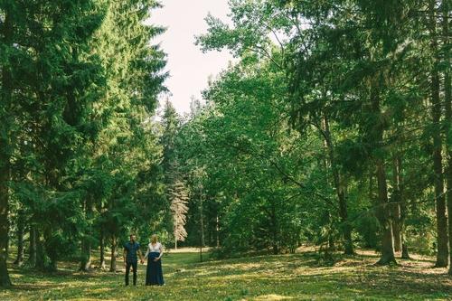 Gaidību fotosesija vecāki meža ielokā