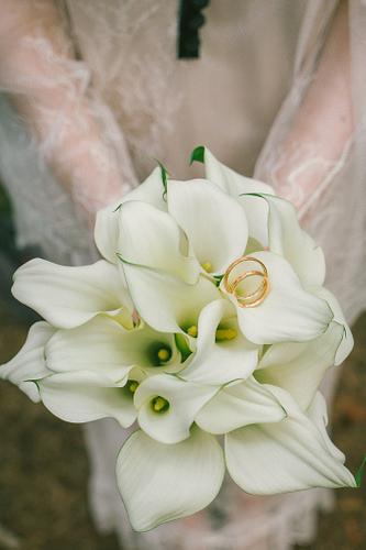 Līgavas pušķis un gredzeni baltas kallas
