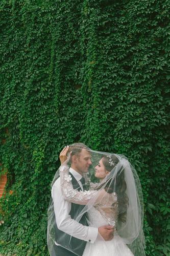 Jaunais pāris zem līgavas plīvura fonā mežvīnu vīteņu siena