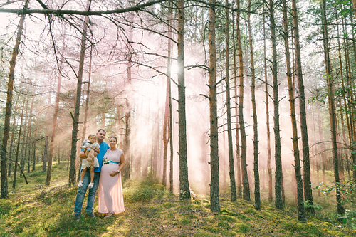 Ģimenes fotosesija priežu mežā ar rozā dūmu sveci migla saules staros
