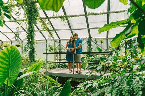 Romantiska bilde siltumnīcā Botāniskajā dārzā topošajiem vecākiem