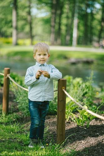 Mazs puisītis parkā pie apstādījumiem