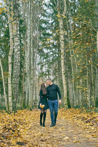 Pāris rokās sadevušies pastaigājas pa zelta lapkritī dabas taku Siguldā rudens koši dzeltenas lapas