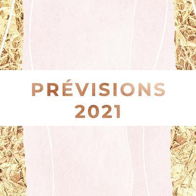 Prévisions de l'année 2021