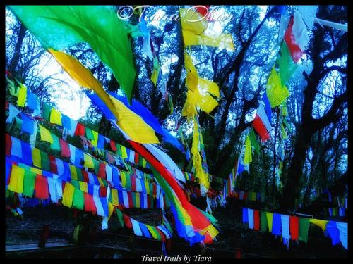 Of devotion, wishes and prayers flags