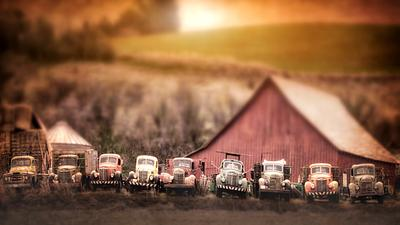 Old Tow Trucks in a Row