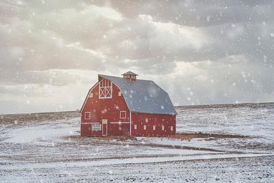 Winter at Palouse Country Barn