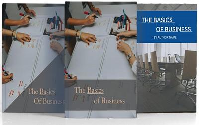 Business Startup PLR Pack