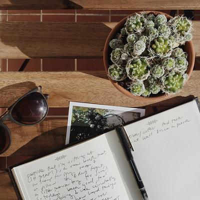 Goals, Journaling, and Positivity