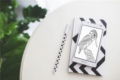 Bold & Beautiful Birds Activity Pack