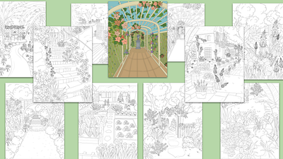 Secret Lovely Lush Garden Coloring Pack with PLR