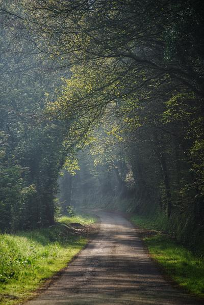 Into the Mist, Country Road, England