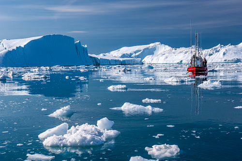 Giant Icebergs of Disko Bay