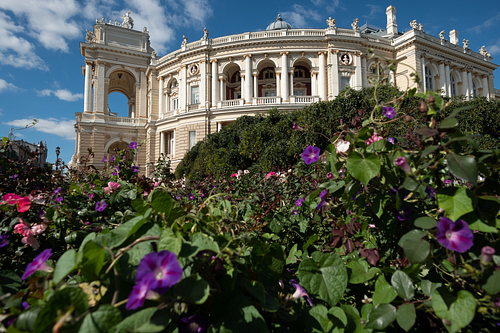 Wide Shot Of Autumn Flowers in Front Of Odessa Opera House