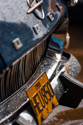 Cuban Number Plate on Wet Car