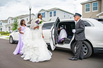 Mark & Elizabeth Wedding