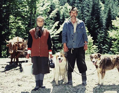Life in Romania, 2002