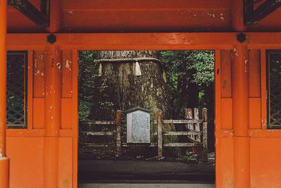 Japan, Summer