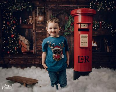 Christmas Mini Shoots