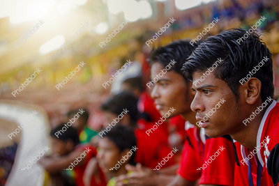 Football fan watching match in stadium