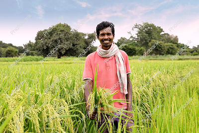 Indian Man Holding Crops