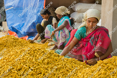 Indian Women and Turmeric