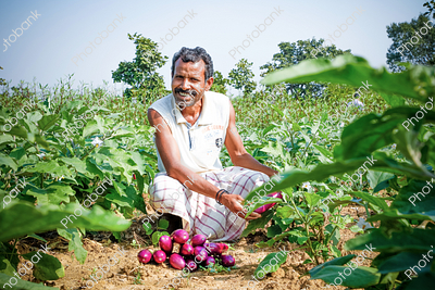 Indian Farmer with Vegetables
