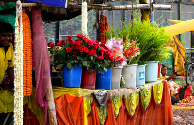 Flower in a shop for sale