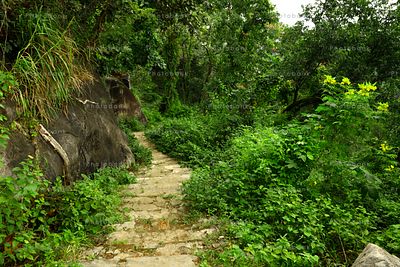Beautiful view of pathway going up canary hill hazaribagh, jharkhand, india